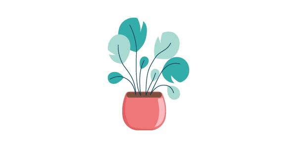 house-plant-01